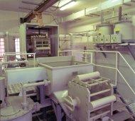 Glass chemical polishing plant LZR 02
